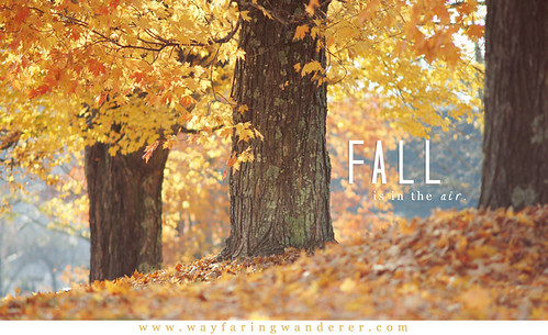 Fall is in the Air | by Wayfaring Wanderer