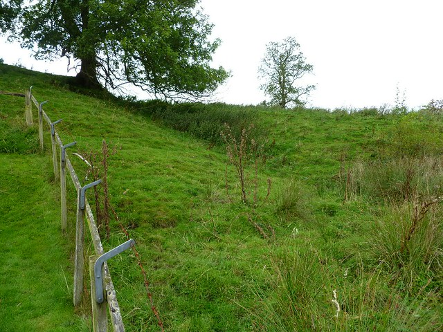 Ditch at Hare Hill