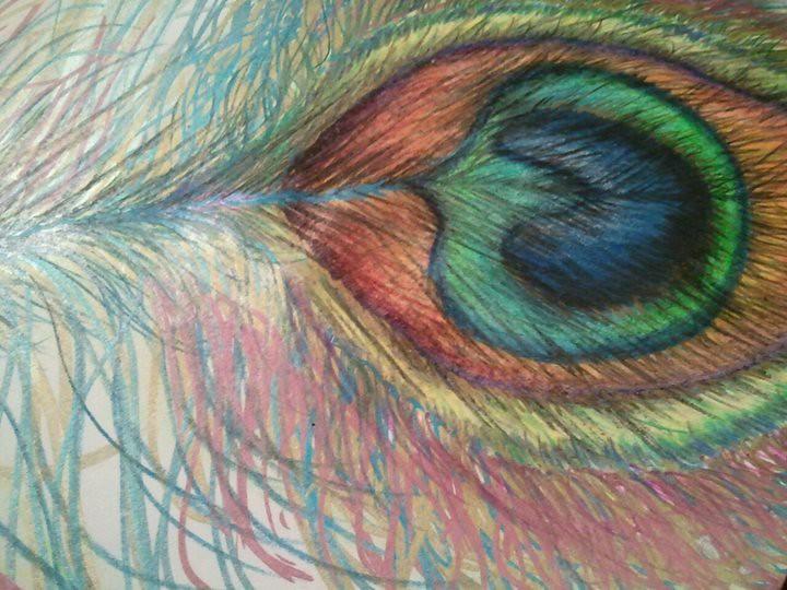 Colored Pencil Feather Colored Pencil Peacock