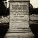 South Carolina Civil War Era Graves - Pic 02