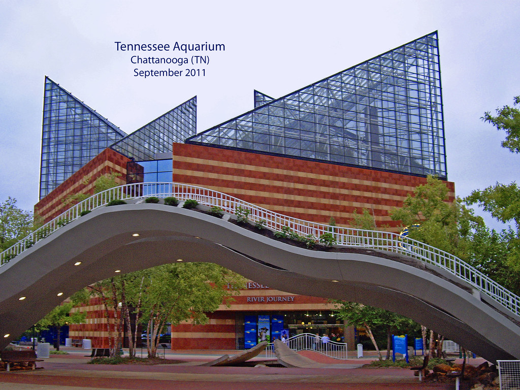 Tennessee Aquarium Chattanooga September 2011 Opened