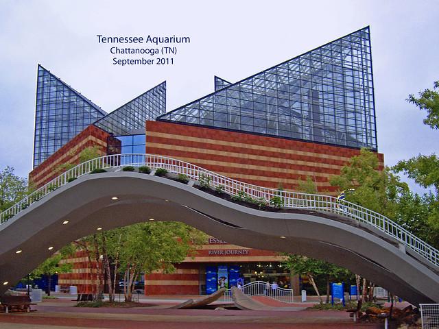Tennessee Aquarium Chattanooga September 2011 Flickr