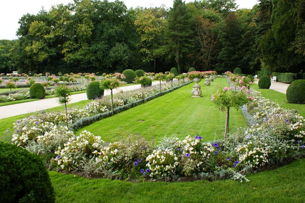 Formal rose garden rosa 39 the fairy 39 2 karl gercens for Formal rose garden layout