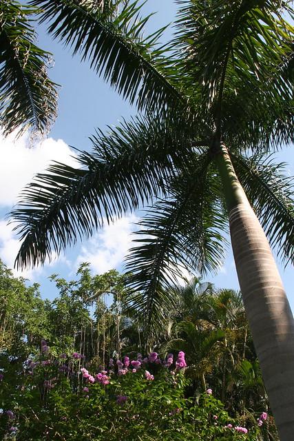 Weather Useppa Island Florida