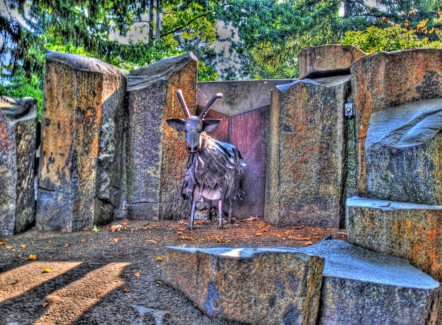 Trash Eating Goat Riverfront Park Spokane Wa Flickr