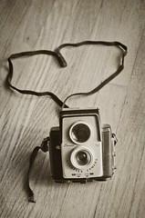 269:365 I heart vintage cameras