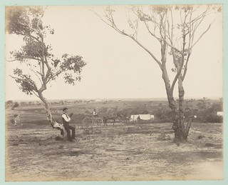Encampment ground, Loftus Heights, [New South Wales]. | by National Library of Australia Commons