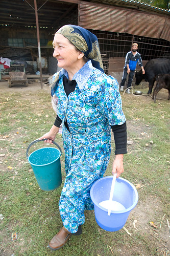 Galima Muhametarimovna milks her cows each morning, contributing the milk to a local Milk Collection Center | by UN Women Gallery
