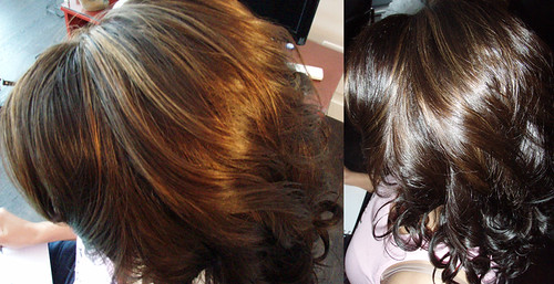 brown-hair-caramel-highlights | by vanmobilehair