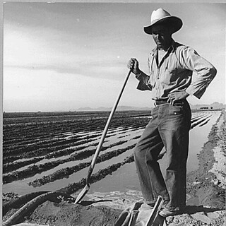 Eloy District, Pinal County, Arizona. Mexican irrigator. He came from Mexico 12 years ago...11/1940 | by The U.S. National Archives