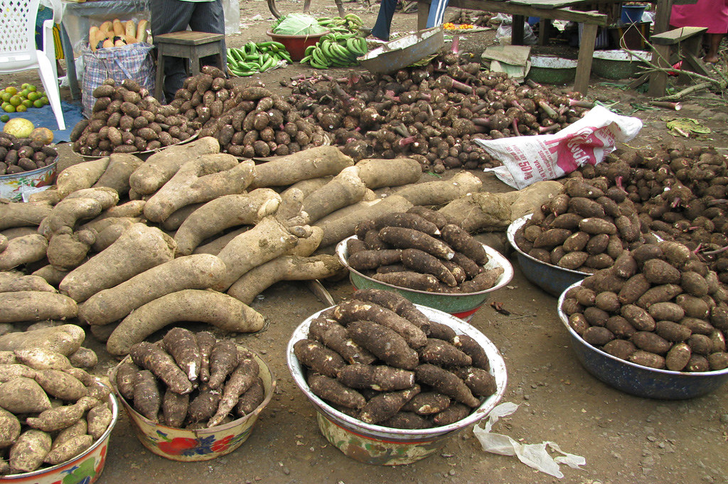 Cocoyam  Yam And Plantain At Cameroon Market