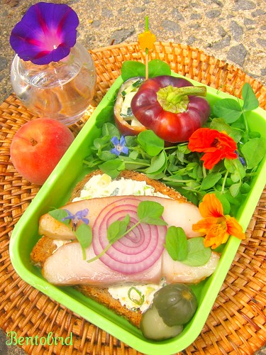 smoked fish sandwich bento | by Bentobird