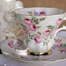 royal albert pink rose