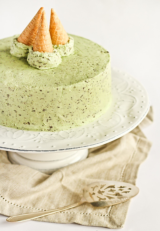 mint chocolate chip cake mint chocolate chip cake mint chocolate chip cake www 5951