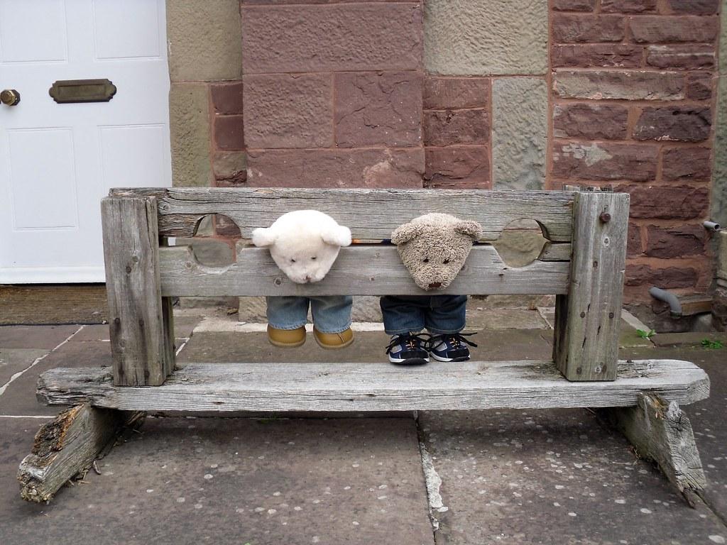 Image Result For Teddy Bear Teddy Bear