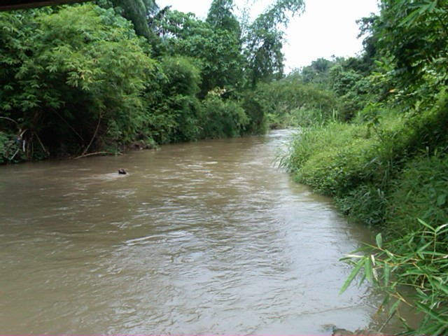 Kondisi Kualitas Air Sungai  Kondisi kualitas air Sungai