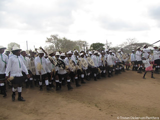 Musical procession at Shembe ceremony | by Panthera Cats