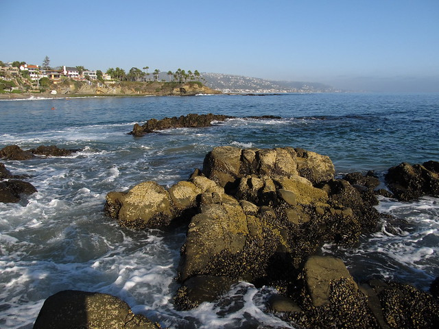 Laguna Beach Tide Pools Time