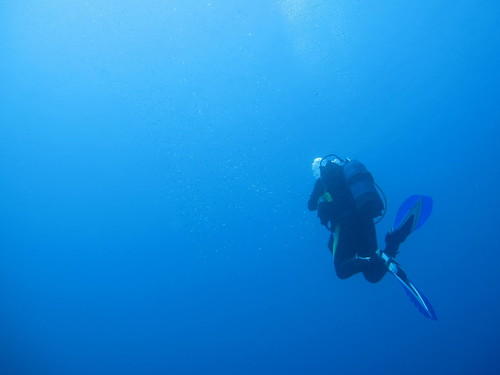 diving @ limanakia, Attica | by nsyll