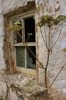 Abandoned home | by ladyjaypeg