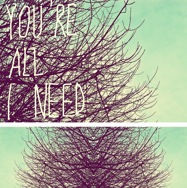 You re all i need flickr photo sharing