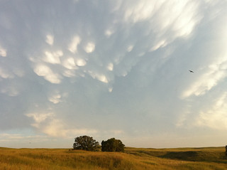 Sky @Niobrara Wildlife Preserve | by theknitist