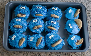 cookie monster | by ecov ottos