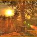 Sunset Millstatt 1