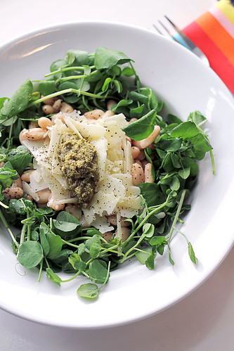 Pecorino Cheese, Green Pesto and Cannellini Beans | by Salad Pride