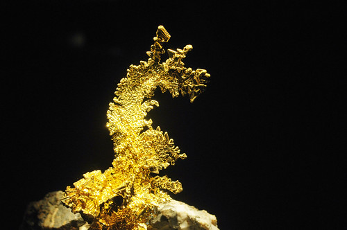 The Dragon | HMNS Mineral Hall | by Houston Museum of Natural Science