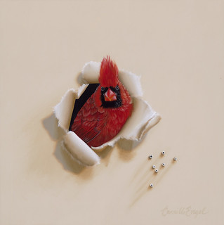 "Trompe-l'oeil Male Cardinal Bird Oil Painting by Camille Engel, ""Flame Head"" 