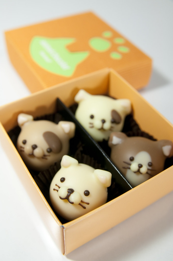 Cat Shaped Chocolate Candy