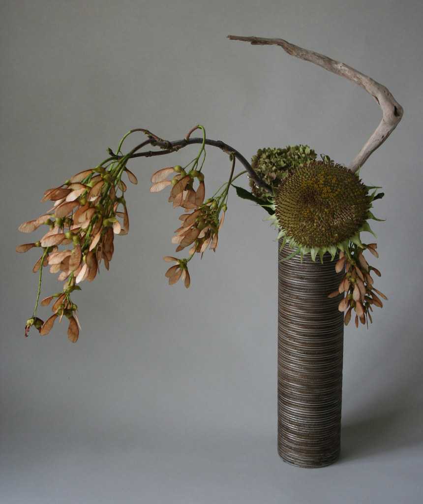Flower Arrangement Using Driftwood: With The Execption Of The