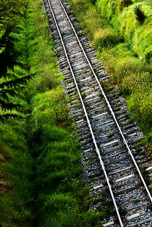 Rails | by District of Colombia