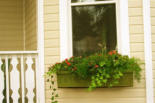 ~A WINDOW BOX~ | by MaryLou1298