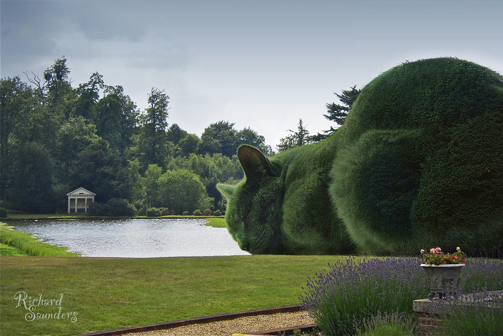 The Topiary Cat The Huge Topiary At This Stately Home In