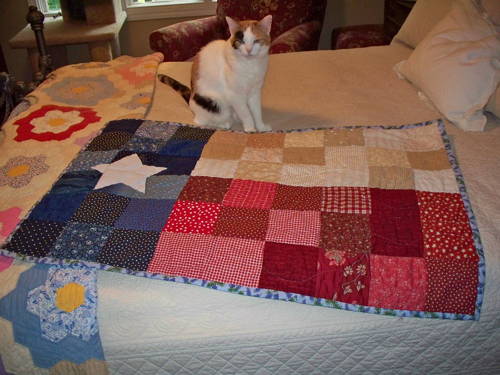 texas flag quilt finished | quiltedgarden | Flickr : texas flag quilt - Adamdwight.com