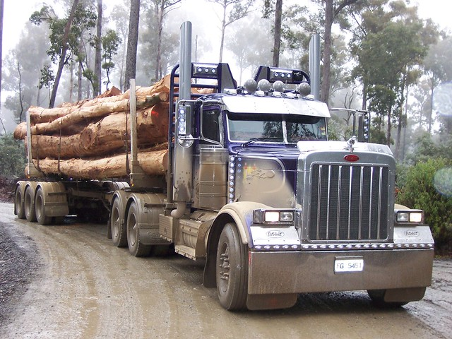 379 Peterbilt log truck | Flickr - Photo Sharing!