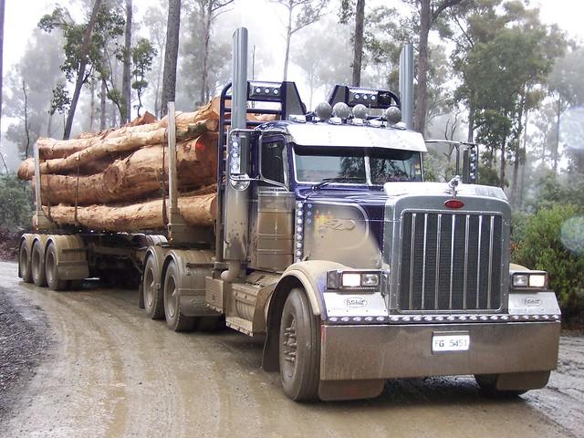 379 Peterbilt log truck | Flickr - Photo Sharing!
