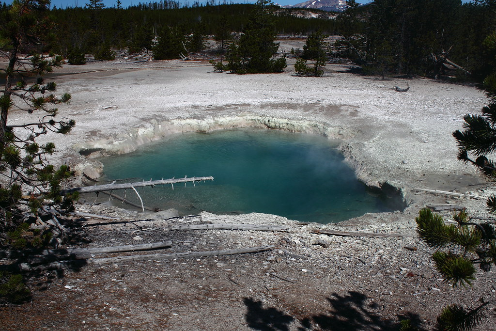 Mystic Spring Norris Geyser Basin Yellowstone National