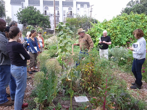 Fall Planting Class- The Learning Garden at Venice HS | by Veronica in LA