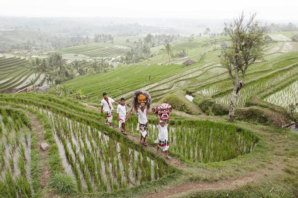 Jatiluwih rice terrace bali sing your way home flickr for What does terrace farming mean