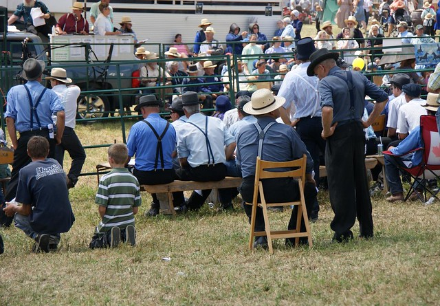 A comparison of the chasidim and the old order amish