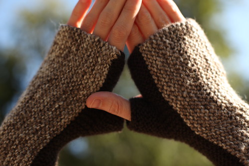 Sugar Cane Mitts | by jayellesea