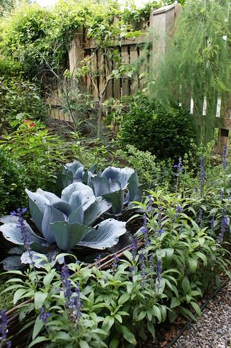 Vegetable Garden In Shades Of Blue Karl Gercens Flickr