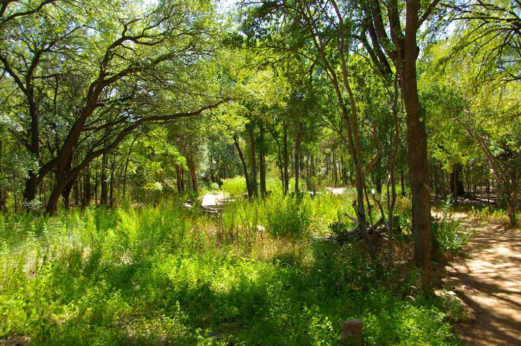 Part Of The Zilker Park Botanical Garden The Flickr