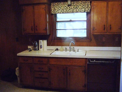 kitchen sink and cabinets | by michaelwfreem