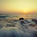 سآتي قبل أن تأخذني !  | Seascape #6
