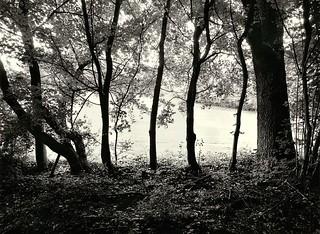 Kodak 400 TMY-2 photos on Flickr | Flickr