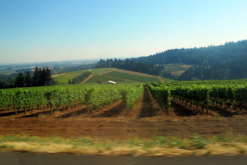 Dundee Oregon - Wine Country | by Canadian Veggie